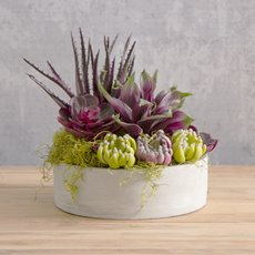 Artificial Succulent Agave Small Purple (20x25cmH)