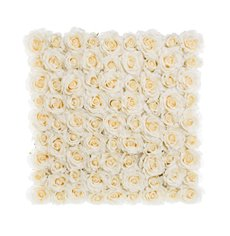 Rose Flower Wall Cream (50cmx50cm)