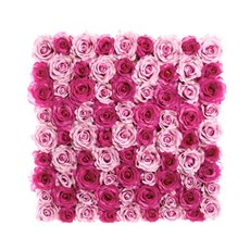Flower Walls - Rose Flower Wall Mixed Pink (50cmx50cm)