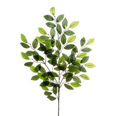 Artificial Leaves - Camellia Leaf Spray 80 Leaves Green (65cmH)