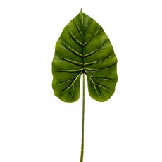 Artificial Leaves - Canna Leaf Pick  Dark Green (55cmH)