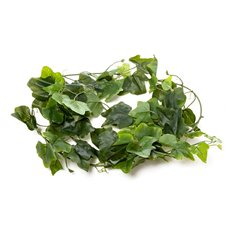 Leaf Ivy Garland Real Touch Green (2mt)