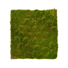 Artificial Moss and Fillers - Artificial Moss Mat Rocky Square Green (40x40cm)