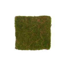 Artificial Moss and Fillers - Artificial Moss Mat Rocky Square Green (20x20cm)