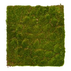 Artificial Moss Mat Rocky Square Green (100cmx100cm)