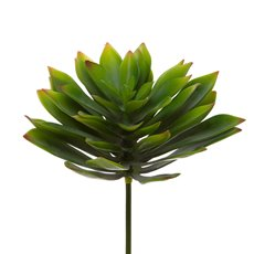 Artificial Succulents - Artificial Succulent Florette Green (20cmDx25cmH)