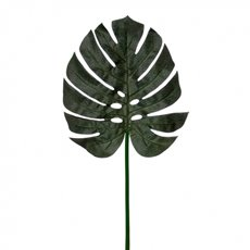 Leaf Split Philo Dark Green (105cmH)