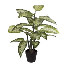 Artificial Plants - Artificial Dieffenbachia Potted Plant Real Touch (90cmH)