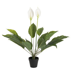 Artificial Plants - Artificial Spathiphyllum Potted Plant Real Touch (76cmH)