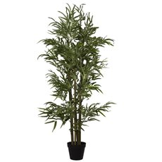 Bamboo Tree Potted Plant Green (120cmH)