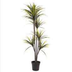 Artificial Plants - Artificial Yucca Potted Plant x5 Heads (152cmH)