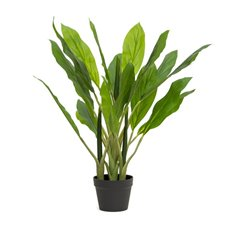 Artificial Plants - Artificial Dracaena Potted Plant Fresh Look (85cmH)