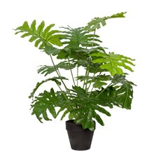 Artificial Plants - Artificial Philodendron Potted Plant (71cmH)