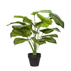 Artificial Plants - Artificial Green Apple Varigated Leaf Potted Plant (71cmH)