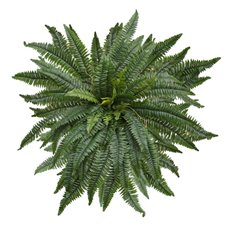 Artificial Leaves - Hanging Plants Boston Fern  Extra Large (110cmW)
