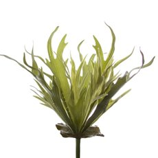 Artificial Plants - Artificial Staghorn Plant Grey Green (48cm)