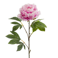Artificial Peonies - Princess Peony Light Pink (80cmH)