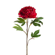 Artificial Peonies - Princess Peony Red (80cmH)