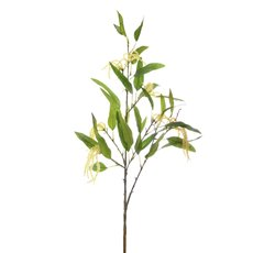 Other Flowers - Eucalyptus Spray with Flowers (95cm)