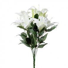 Casablanca Lily Bunch White (62cmH)
