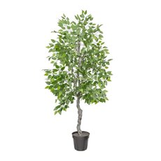 Artificial Trees - Artificial Ficus Tree Potted Green (180cmH)