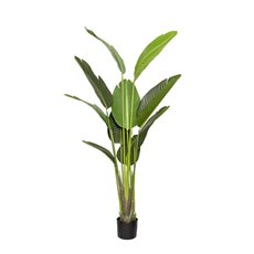 Artificial Plants - Artificial Bird Of Paradise Strelitzia Plant Potted (150cm)
