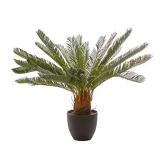 Artificial Plants - Artificial Cycas Palm Potted Green (70cm)