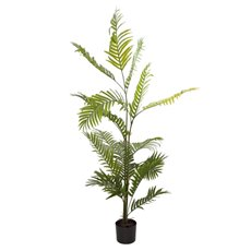 Artificial Trees - Artificial Kentia Palm Tree Potted Green (180cm)