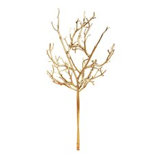 Coral Tree Multi Branch Gold (90cmH)