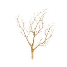 Coral Tree Twisted Branch Gold (65cmH)