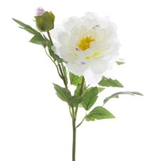 Artificial Peonies - Peony Alicia Cream (45cmH)