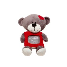 Tyler Teddy Bear with Frame Grey (16cmST)