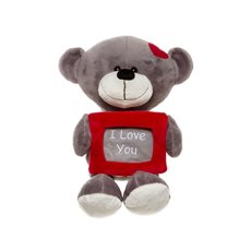 Tyler Teddy Bear with Frame Grey (25cmST)