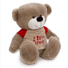 Valentines Teddy Bears - Mike Bear with Tshirt Brown (30cmST)