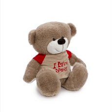 Valentines Teddy Bears - Mike Bear with Tshirt Brown (20cmST)