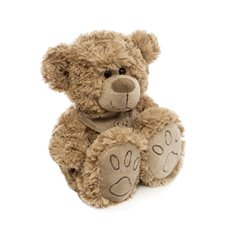 Teddytime Teddy Bears - Danny Bear Brown (22cmST)