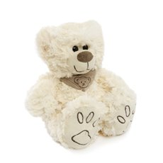 Teddytime Teddy Bears - Danny Bear White (22cmST)