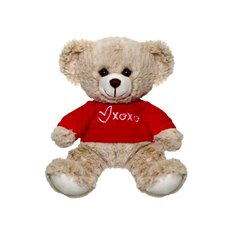 Valentines Teddy Bears - Nina Bear with Tshirt Beige (20cmST)