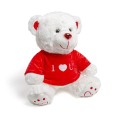 Valentines Teddy Bears - Nikki Bear with Tshirt (25cmST)