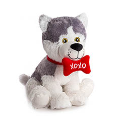 Valentines Teddy Bears - Husky Puppy with Xoxo Bone (30cmST)