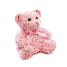 Teddytime Teddy Bears - Georgie Teddy Bear Baby Girl Pink (20cmST)