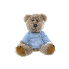 Teddy Bear Message Its a Boy Blue T.Shirt (20cmHT)