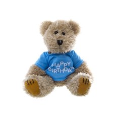Teddy Bear Message Happy Birthday Blue T.Shirt (20cmHT)