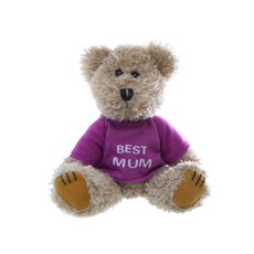 Teddy Bear Message Best Mum Hot Pink (19-20cmHT)