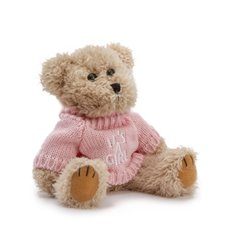 Teddy Bear Message Its a Girl Pink Jumper (20cmHT)
