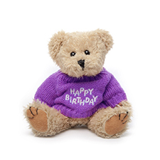 Teddy Bear Message Happy Birthday Hot Pink Jumper (20cmH