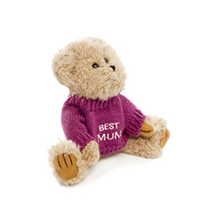 Teddy Bear Message Best Mum Hot Pink Jumper (20cmHT)