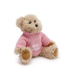 Personalised Teddy Bears - Teddy Bear Message Best Nanna Pink Jumper (20cmHT)