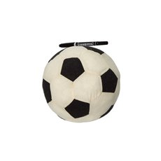 Graduation Teddy Bears - Signature Soccer Ball with Pen (18cmD)