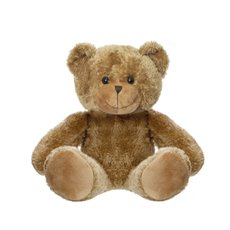 Personalised Teddy Bears - Teddy Bear Brown (25cm ST)